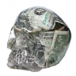 Crâne Dollars
